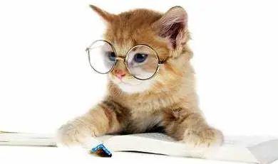教你如何写出一份完美的CV